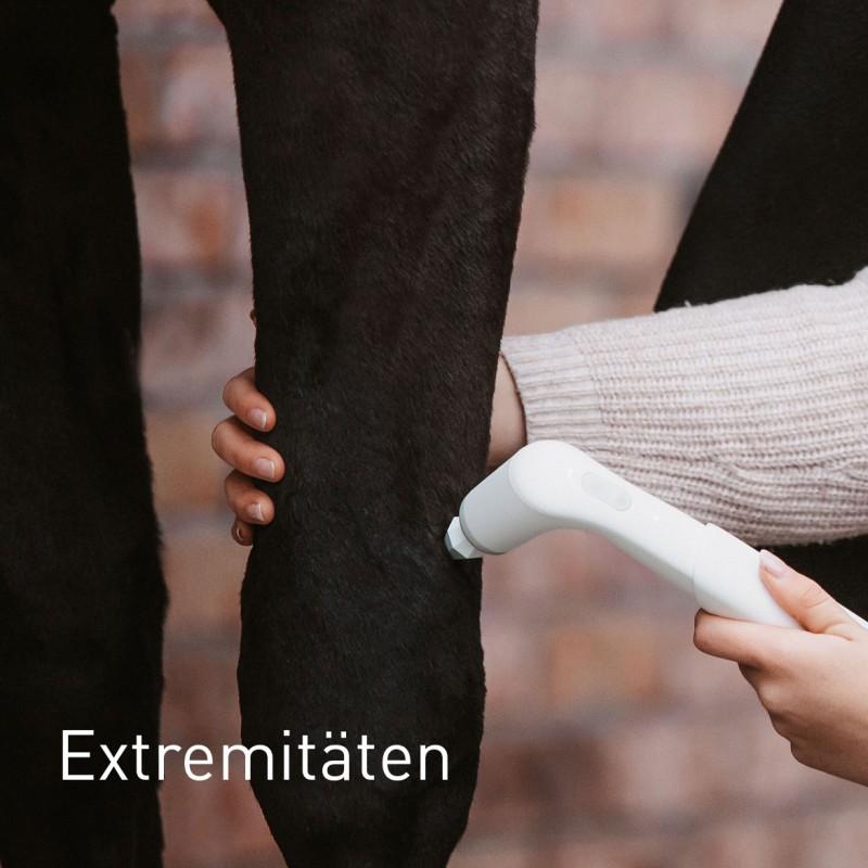 Extremitäten beim Pferd behandeln mit NOVAFON