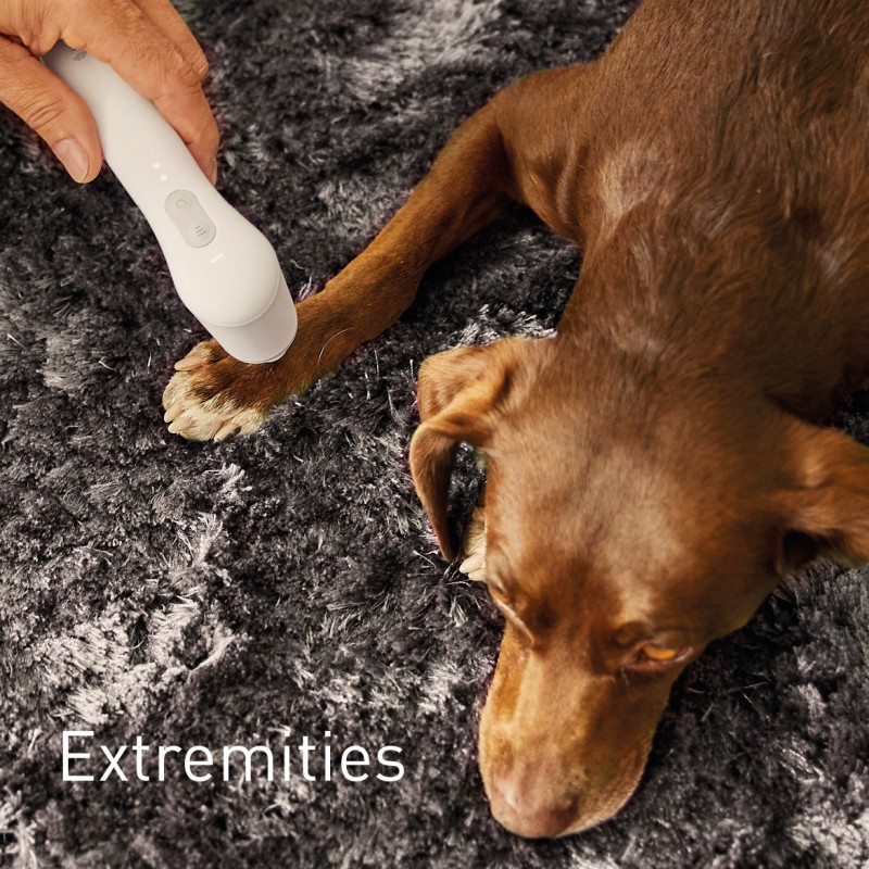 NOVAFON treatment of extremities on dogs