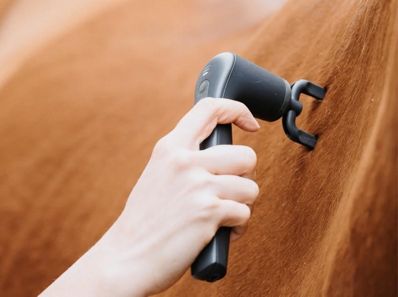 Physio-Set: Faszien-Gabel am Pferd